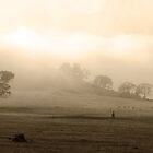 Misty Meadow by Wendy  Meder