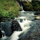 Waterfall, Zomba Plateau, Malawi by Tim Cowley