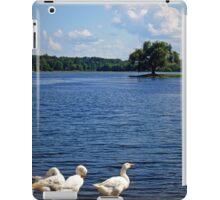 Geese enjoying a day at the Lake iPad Case/Skin