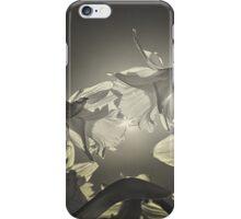 Daffodils in the sun iPhone Case/Skin