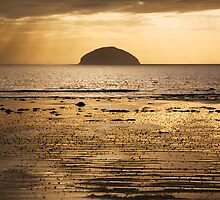 Golden Island by Andy Gill