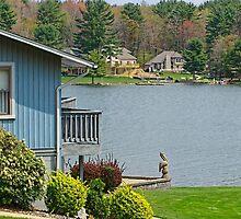 Spring time lake view by vigor