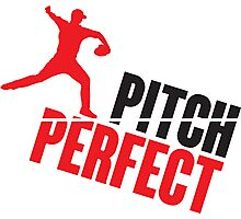 Pitch perfect Photographic Print