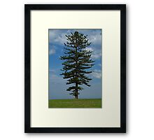 Magestic Framed Print