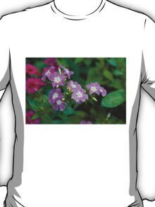 Sweet Pink Dianthus Flowers T-Shirt