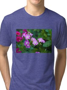 Sweet Pink Dianthus Flowers Tri-blend T-Shirt