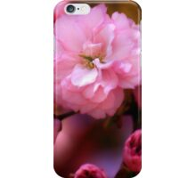 Lovely Spring Pink Cherry Blossoms iPhone Case/Skin