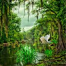 Withlacoochee River Dreaming by Miles Moody