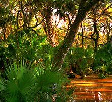 Among the Mangroves by Wayne King