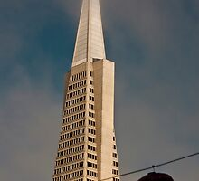 TransAmerica Pyramid Building San Francisco with Incoming Fog by Buckwhite