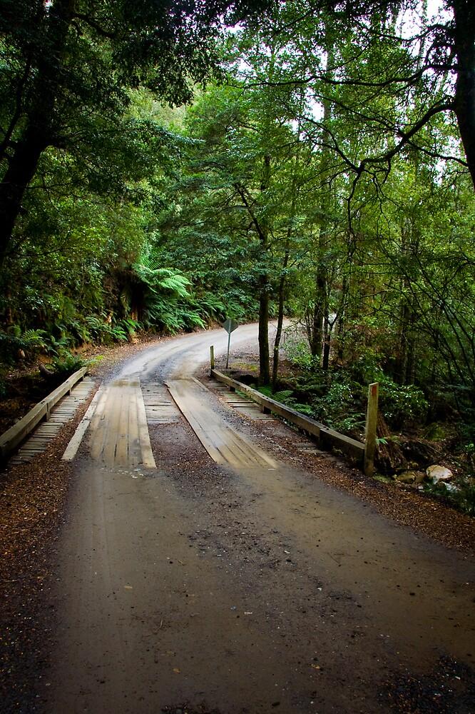 Wooden Bridge on Liffey Falls Track by Martin Pot
