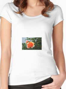 Peach is Perfect Women's Fitted Scoop T-Shirt