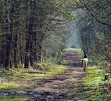 Riding In Spring by mhphotographyuk