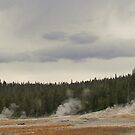 Line Up the Geysers! by Rachel Sonnenschein