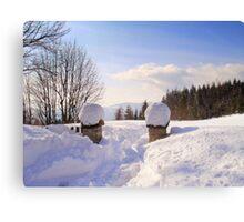 Winter's scene Canvas Print