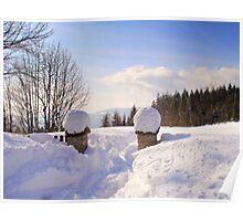Winter's scene Poster