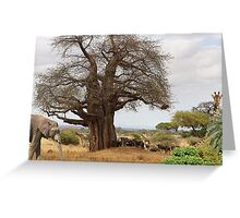 1168-Under the Tree Greeting Card