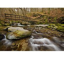 Footbridge in Stock Ghyll, Ambleside Photographic Print