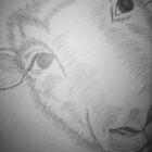 Sheep by kkdesign