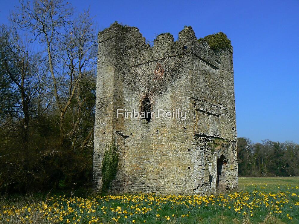 lanestown castle by Finbarr Reilly