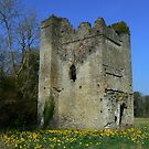 lanestown castle by Finbarr Reilly
