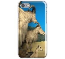 Natural environment diorama - Steinbocks in the desert  iPhone Case/Skin