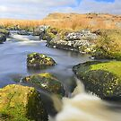Dartmoor: The East Dart at Kit Rocks by Rob Parsons