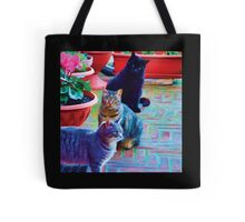 Street Cats in Europe (Square) Tote Bag