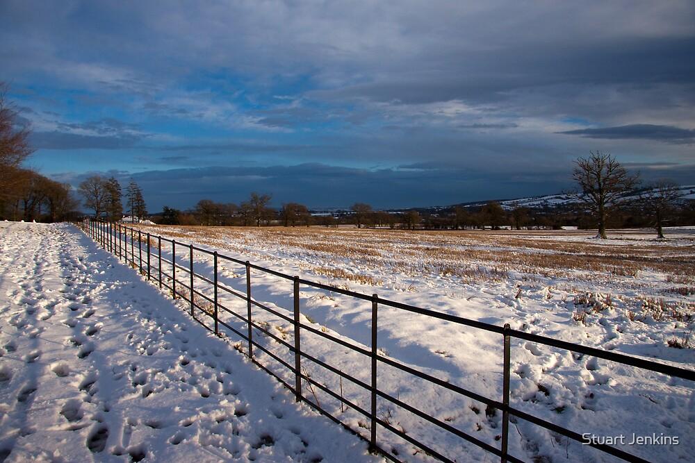 Snowstorm by Stuart Jenkins