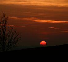 Irish Sunset  by Martina Fagan