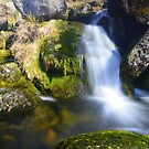 Dartmoor: Yealm Steps by Rob Parsons