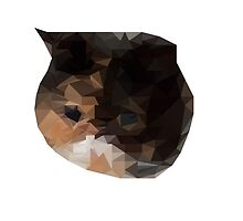 Low Poly - Cat  by jonathanpum