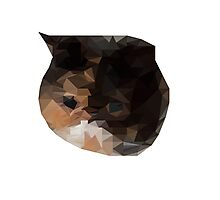 Low Poly - Cat  Photographic Print