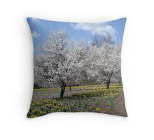 Spring at Dillsboro Exit Throw Pillow