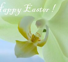 Easter Card by HELUA