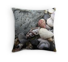 The inside story - Shells 2 Throw Pillow