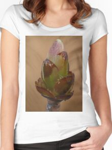 The first spring growth  Women's Fitted Scoop T-Shirt