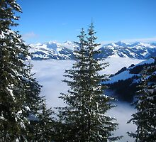 Winter in Austria by Gwyn Lockett