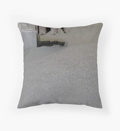 chermside 13 Throw Pillow