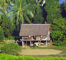 Farm house on the banks of Burma's Irrawaddy River by John Mitchell