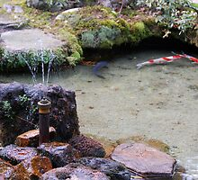 The fountain and the Koi Pond by Harlequitmix