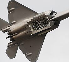 Underbelly - Raptor F22  by Barbara Burkhardt