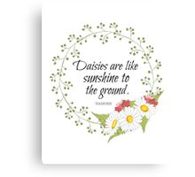 Daisies Are Like Sunshine To The Ground Canvas Print