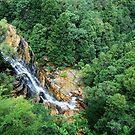 Leura Falls - Blue Mountains National Park NSW by Bev Woodman