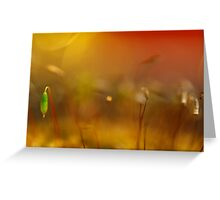 Stand Out From the Crowd Greeting Card