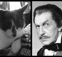 Vincent Price vs. Vincent Price, cat. by cattasticcrafts