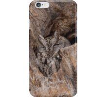 Eastern Screech Owl iPhone Case/Skin