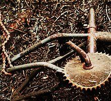 Burned BMX by sinestro75