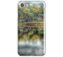 Reflections at High Tide iPhone Case/Skin