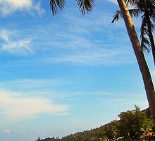 Island Paradise by Jennifer Standing